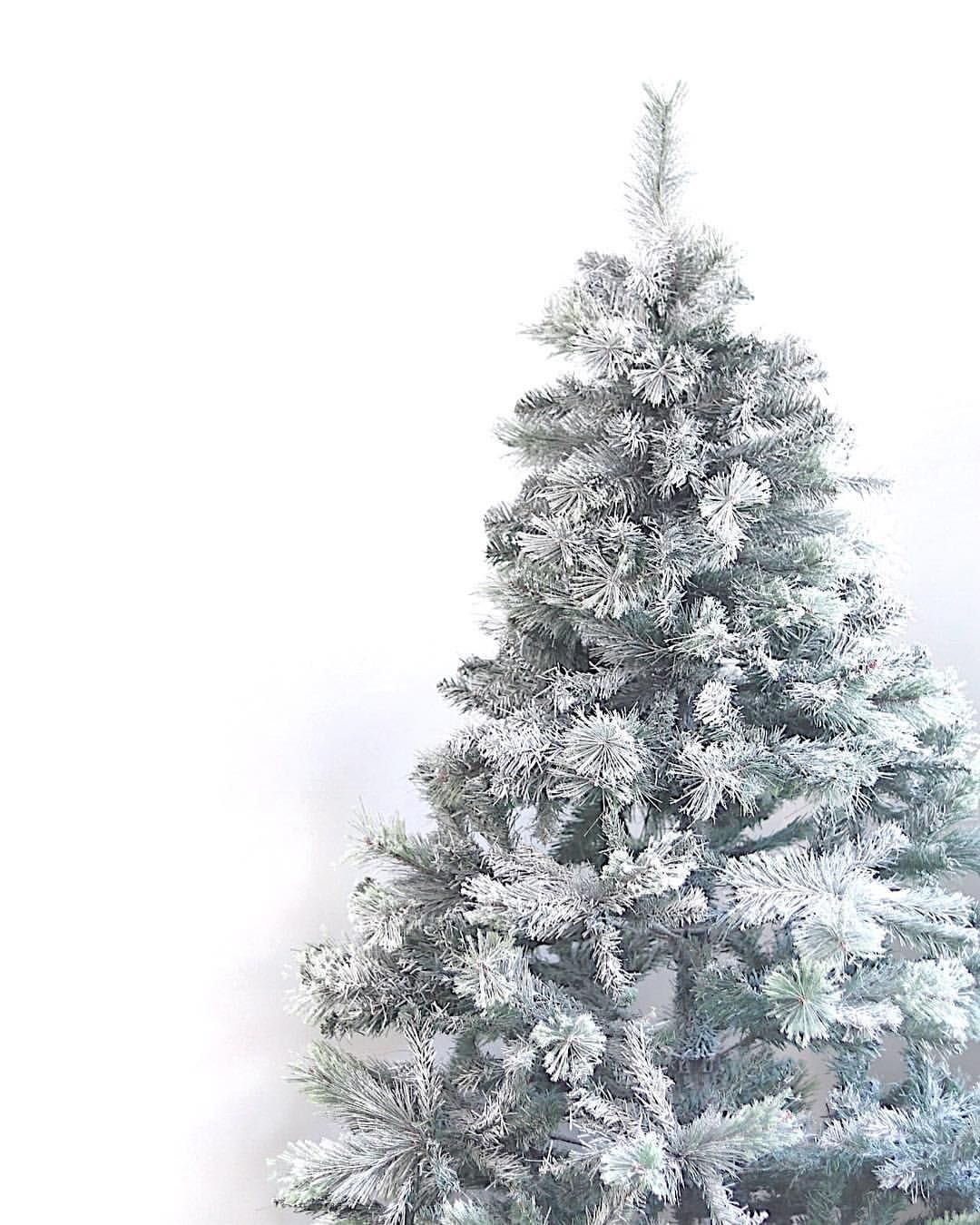 Did Anyone Else Miss Out On That Stunning Snowy Aspen Christmas Tree From Target Me Too So We Fixed Our Old Tree Up With Some Snow Spra Aspen Instagram Snowy