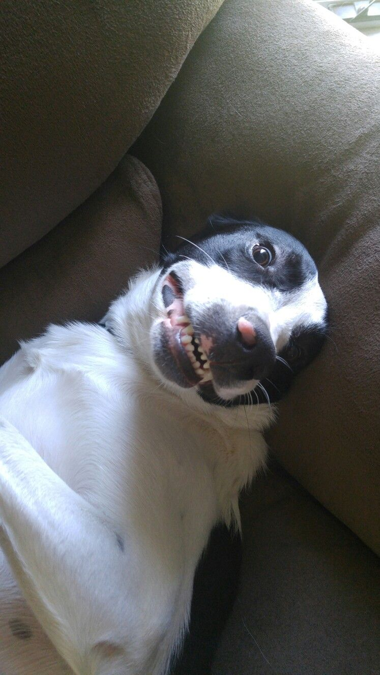 #Smile Pretty For The Camera