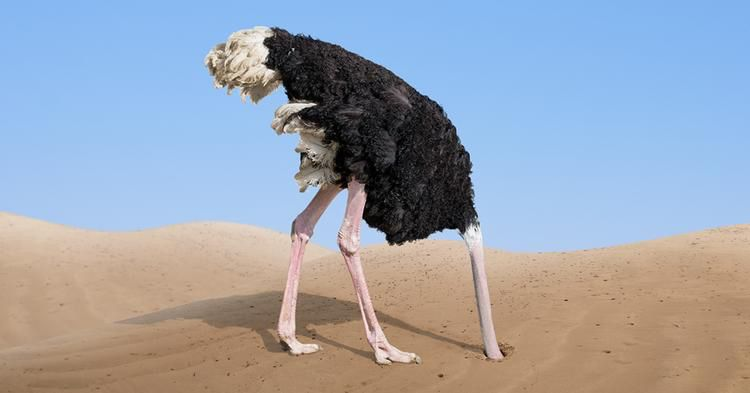 The Ostrich Syndrome - Ignore the threat approach