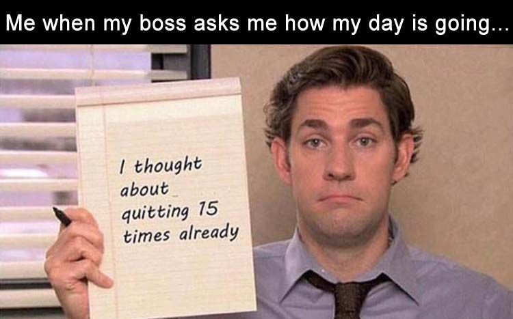 Morning Funny Picture Dump 30 Pics Work Humor Funny Memes About Work Job Humor