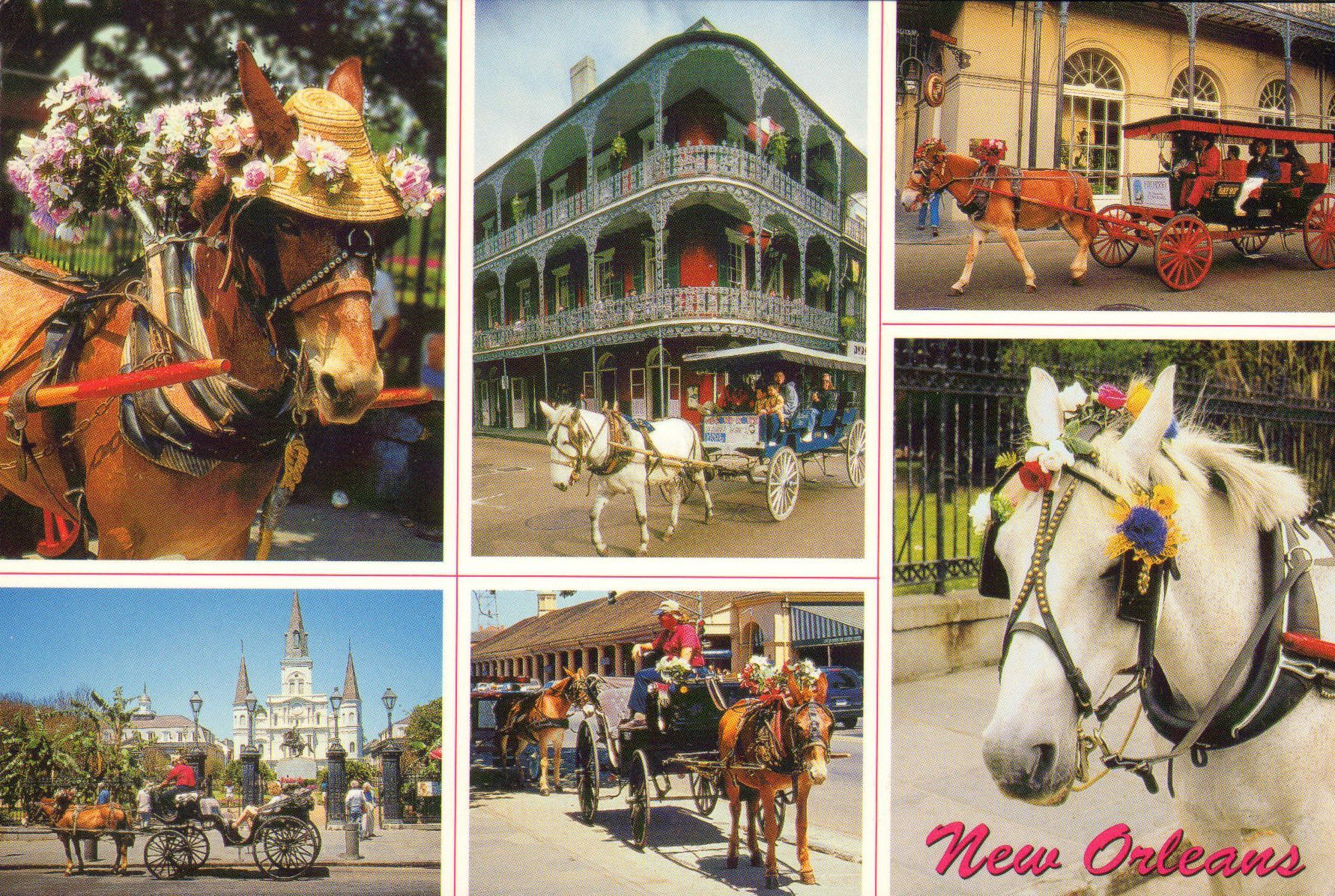 New Orleans is a major US port and the largest city in the