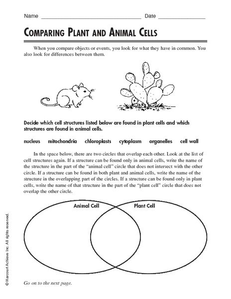 comparing plant and animal cells worksheet lesson planet science sensation pinterest. Black Bedroom Furniture Sets. Home Design Ideas