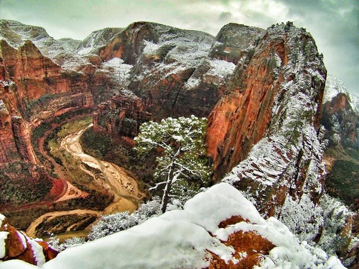 Bill Ratcliffe Landscape Photography at Zion National Park, Utah - Scene from a recent morning hike up Angel's Landing in the snow.