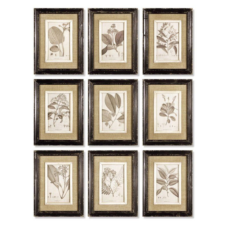 Napa Home and Garden 9 Piece Yellow Bird Study Wall Art
