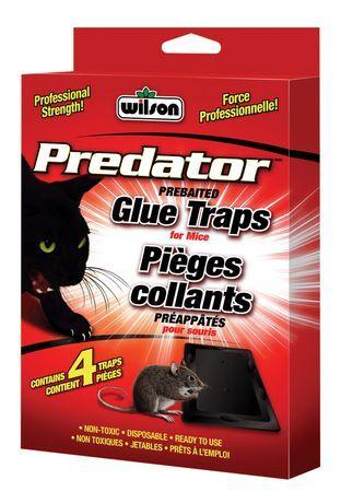 Wilson Predator Mouse Glue Traps Glue Traps Mouse Glue Trap Predator