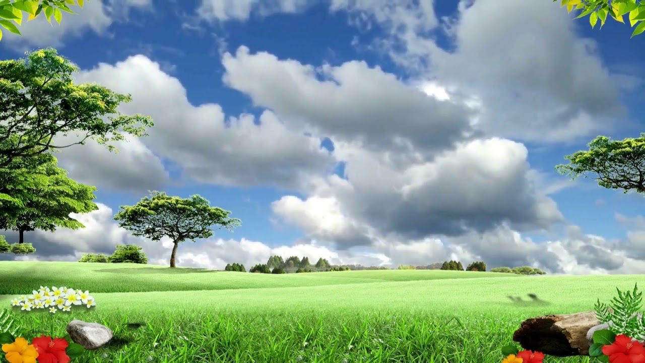 Beautiful Natural Wild Video 3d Background Video 1080p 853 Desktop Background Pictures Background Pictures New Background Images