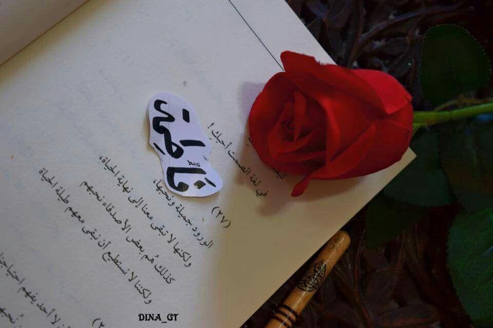 Pin By Ahmed On الأغلب ان اي فاطمه على وجه الارض دايما تكون واصله حد الكفايه في الحسن والجمال Rose Frame Love Words Floral Wallpaper