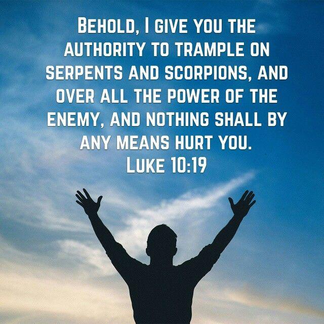 Luke 10:19 | Luke 10 19, Inspirational verses, Word of god