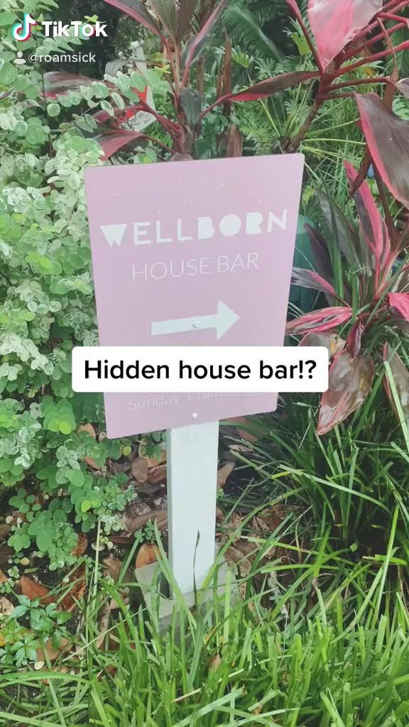 The Wellborn Video Orlando Travel Travel Fun Travel Photography