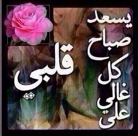 يسعد صباح كل غالى Morning Greeting Good Morning Arabic Beautiful Love Images