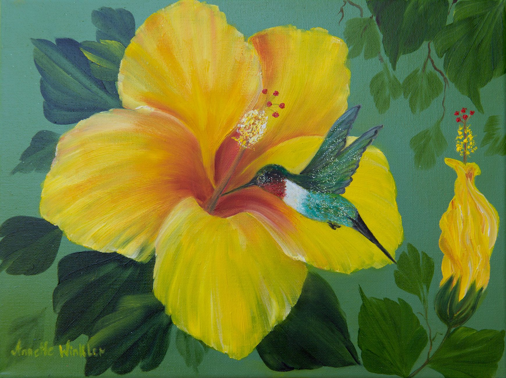 Pictures Of Hummingbird Paintings 10119 Yellow Hibiscus