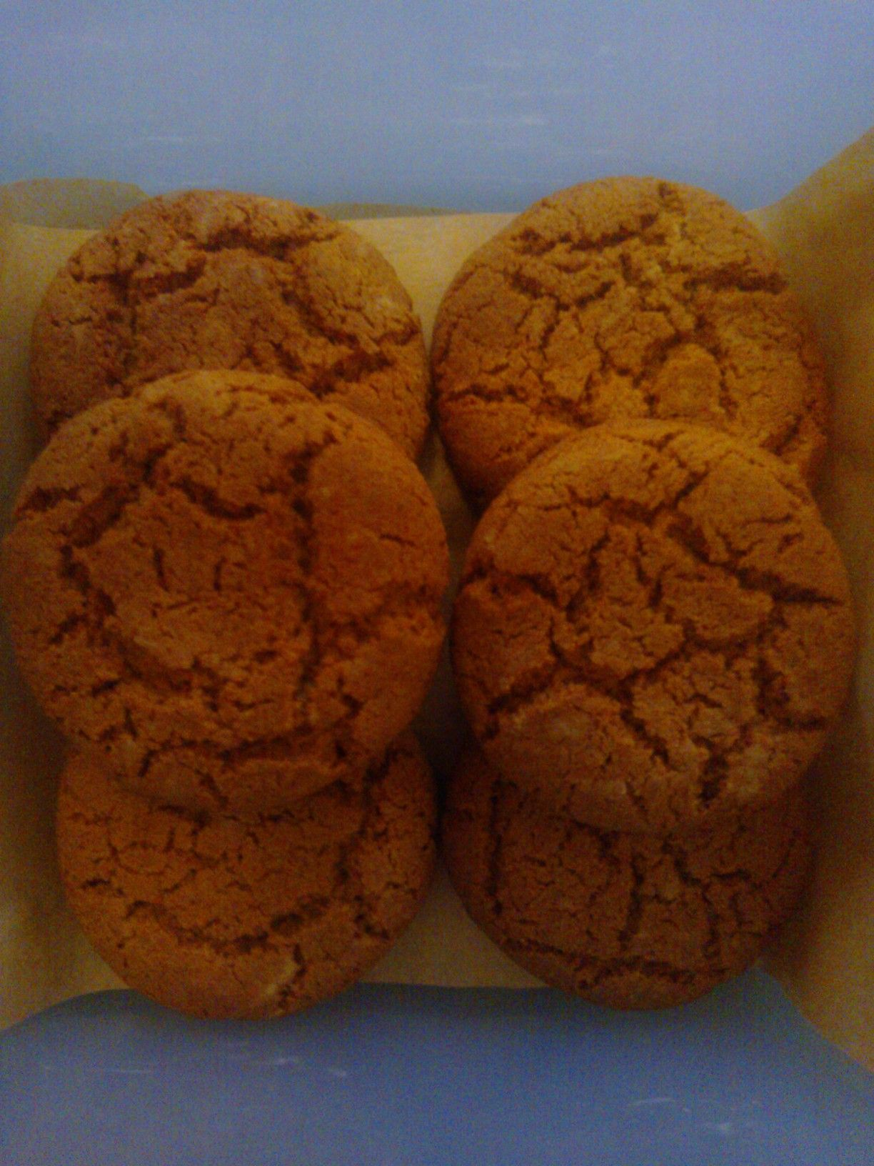 My homemade Ginger Nuts