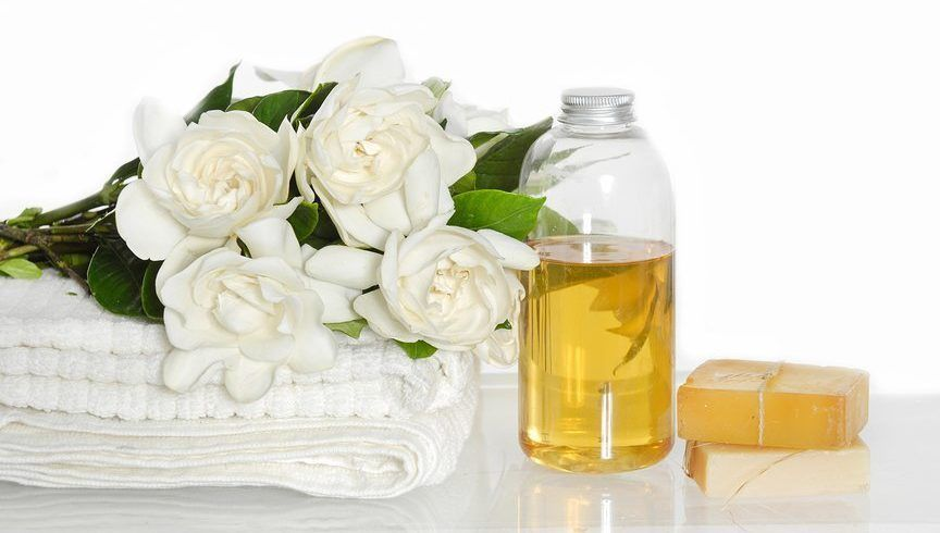 Gardenia Essential Oil Comes From The Flower Of Gardenia Jasminoides The Plant Is A Member Of The Gardenia Essential Oil Essential Oils Tuberose Essential Oil