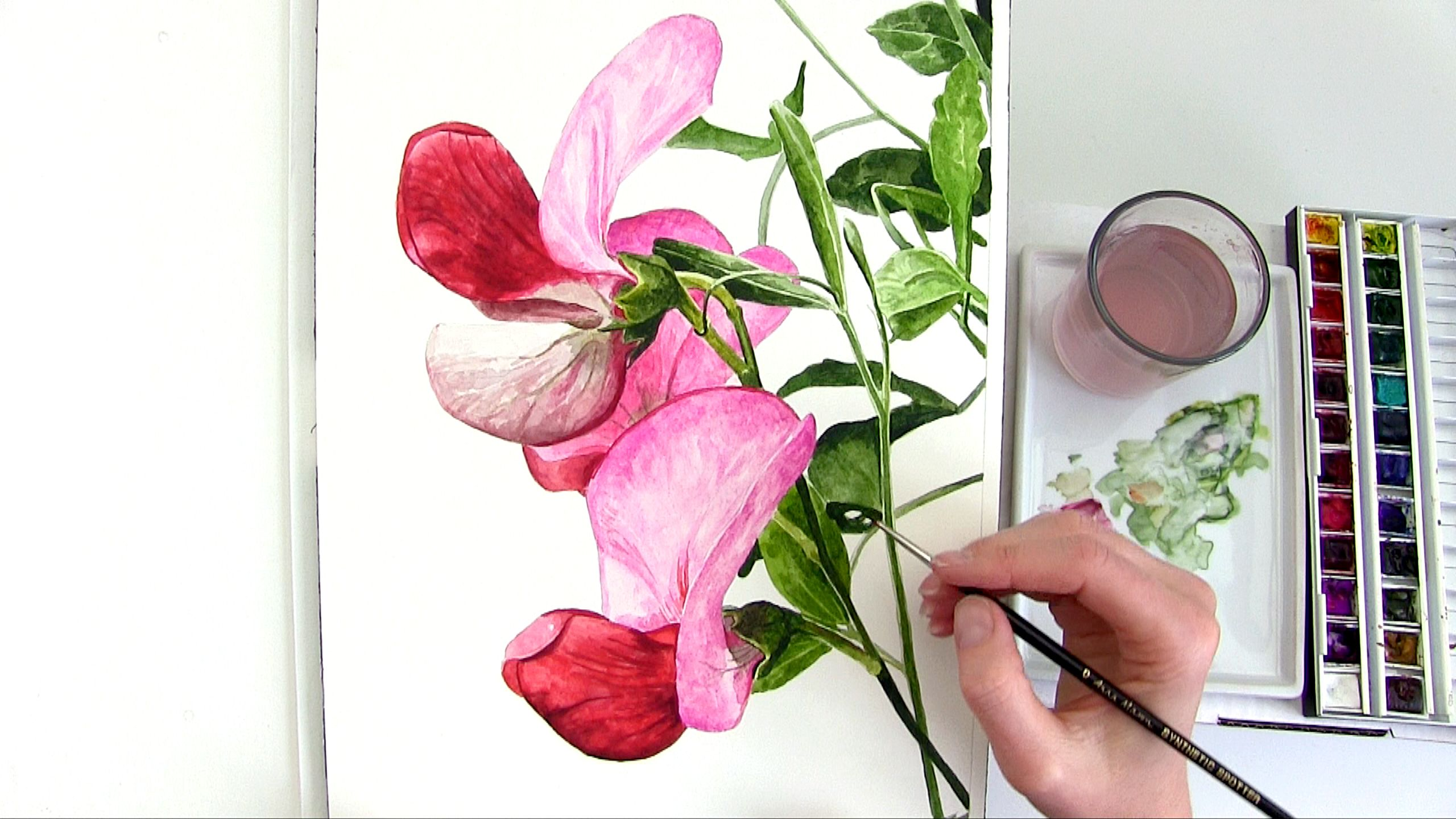 How To Paint A Bright Rounded 3d Petal In Watercolour Floral