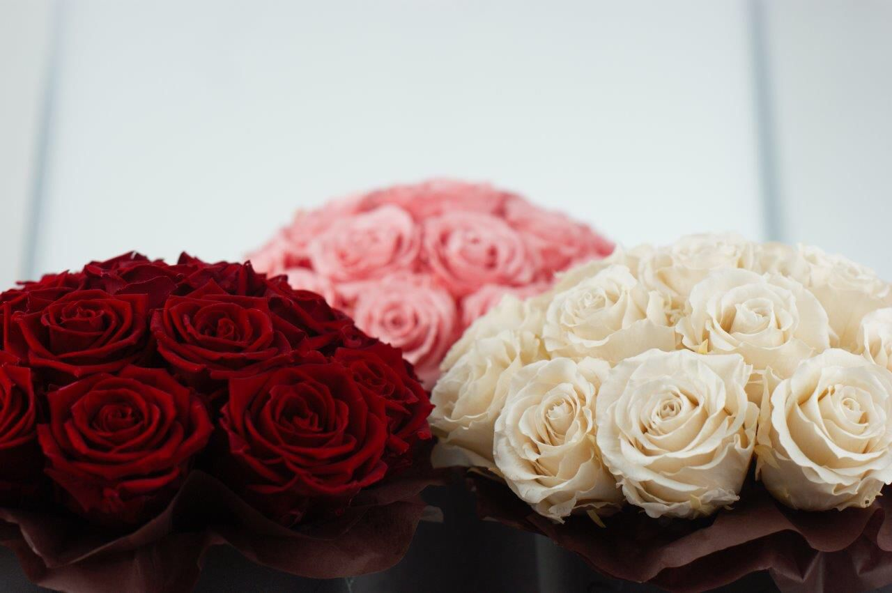 Lodz Srodmiescie Everlasting Flowers Flower Boxes Flowers