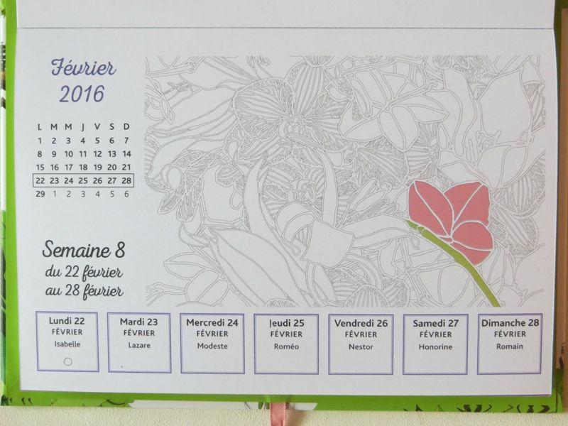 Calendrier à colorier 2016 - Esprit nature