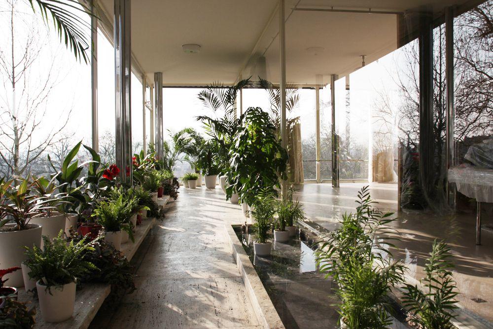 Mies Der Rohe Haus Tugendhat haus tugendhat villa tugendhat wintergarten ludwig