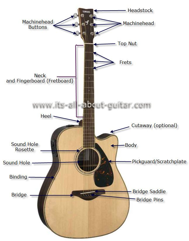 Diagram of an Acoustic Guitar | Instruments in 2019 | Acoustic guitar strings, Guitar classes