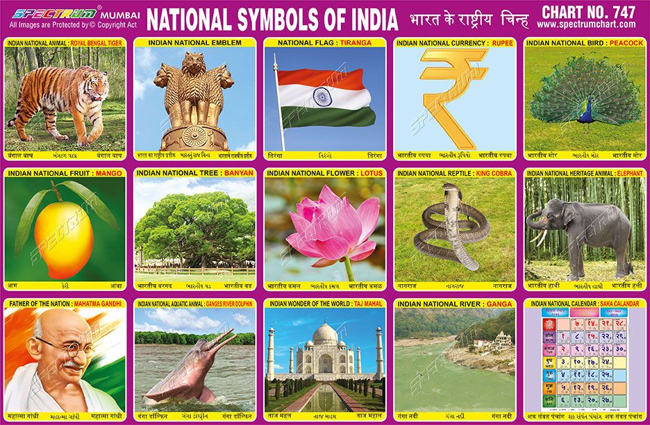 Chart 747 National Symbols Of India With Images National