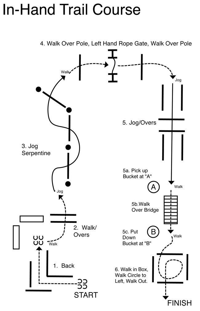 Dressage Exercise Shoulderin Loop Patternsobstaclesjumps