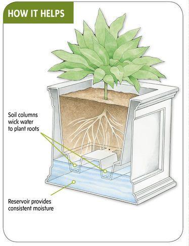 Decorative Planter | Square Self Watering Planter | Gardeners.co