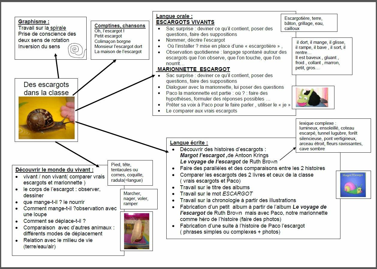 autour des escargots escargot pinterest preschool snail et science. Black Bedroom Furniture Sets. Home Design Ideas