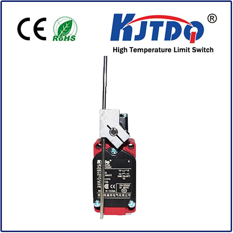 High Limit Switch