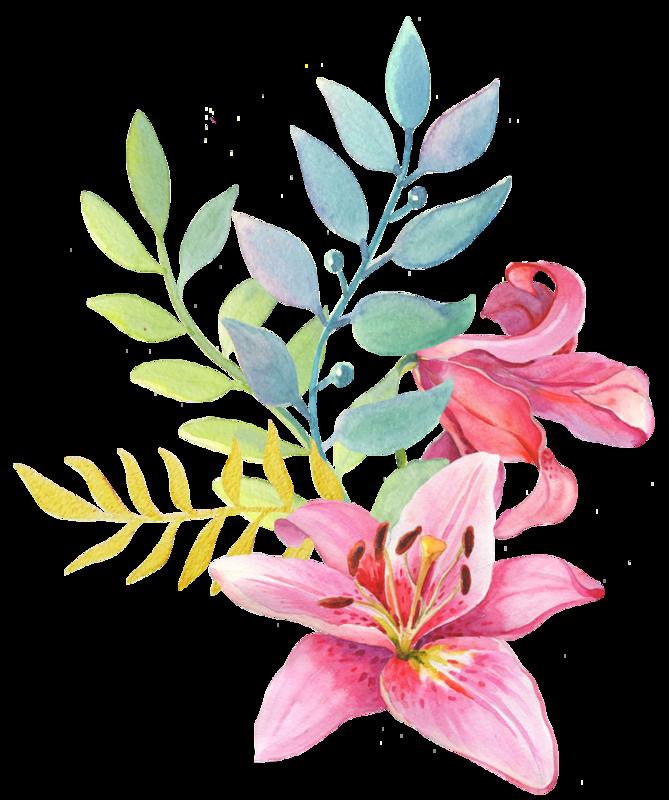 КлипартquotЦветы рисованнныеquot в 2019 г Flower Fruit