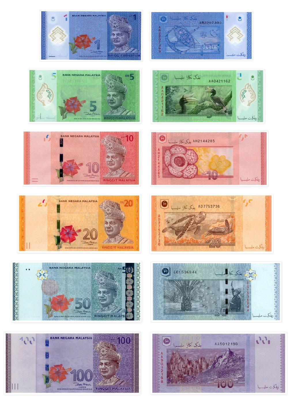 hight resolution of Malaysia   Money notes