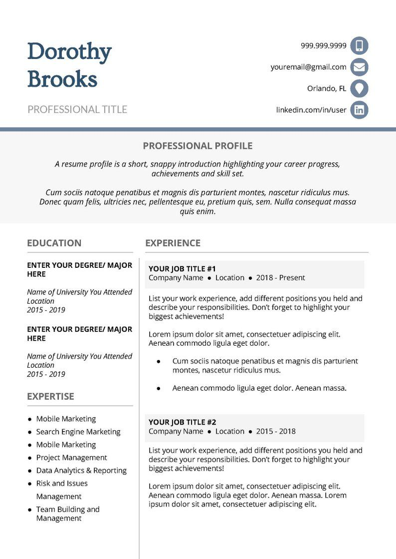 Professional Resume Template Cascade Best resume