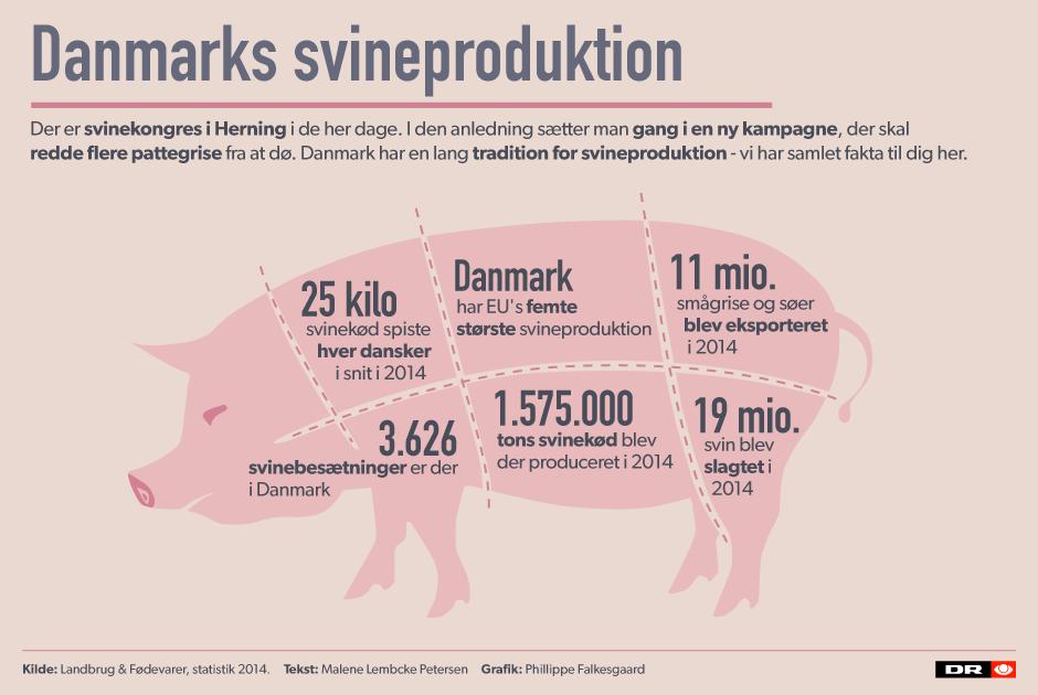svineproduktion i danmark statistik