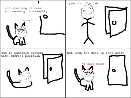 9bd9513ae35281462eaa82844658241f meme comics meow catz about town pinterest meme comics