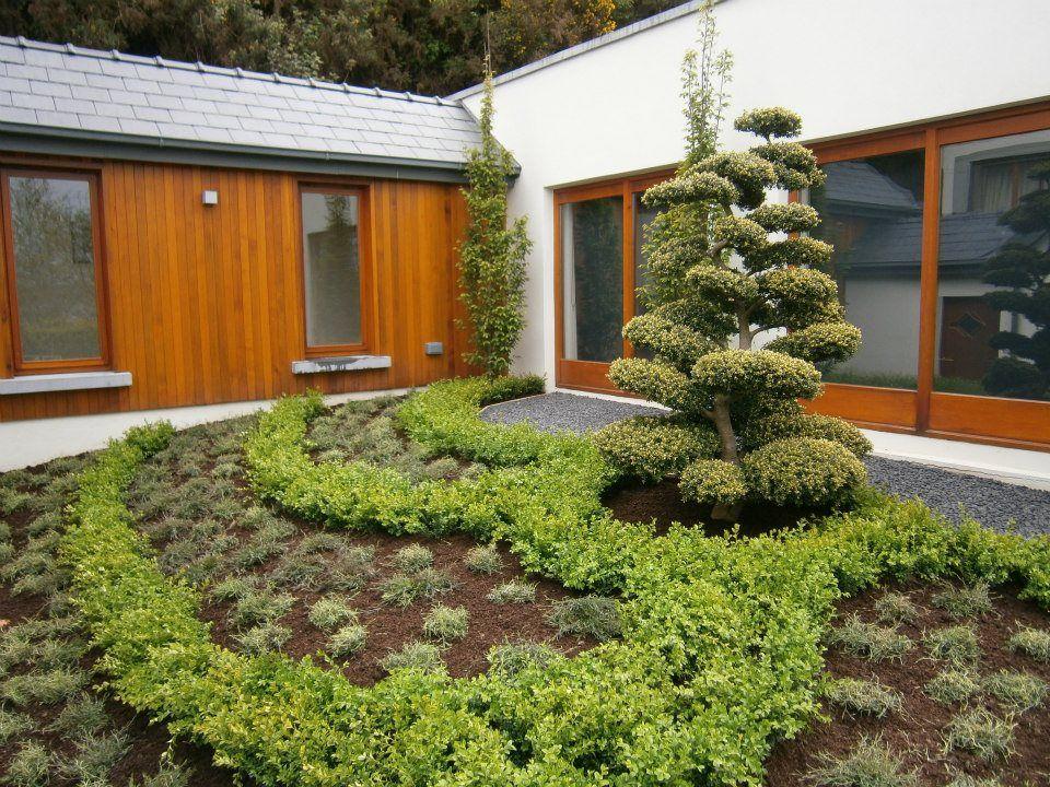 Ornamental Tree Www Thepavilion Ie Garden Design Ornamental Trees Garden Furniture