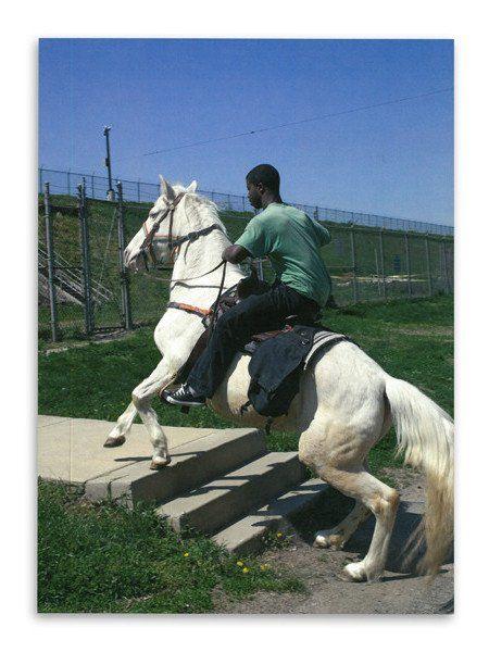 Horseday / Mohamed Bourouissa / SIGNED