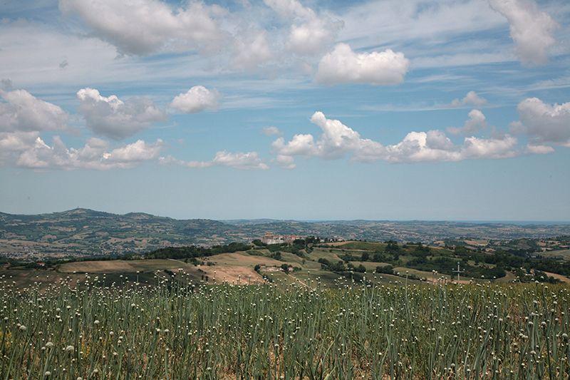 Convento paesaggio lato nord. Foto Paci Fossombrone