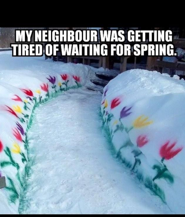 Snow On First Day Of Spring Makes Me >> Nor Easter 4 On The First Day Of Spring For Me Fun Just