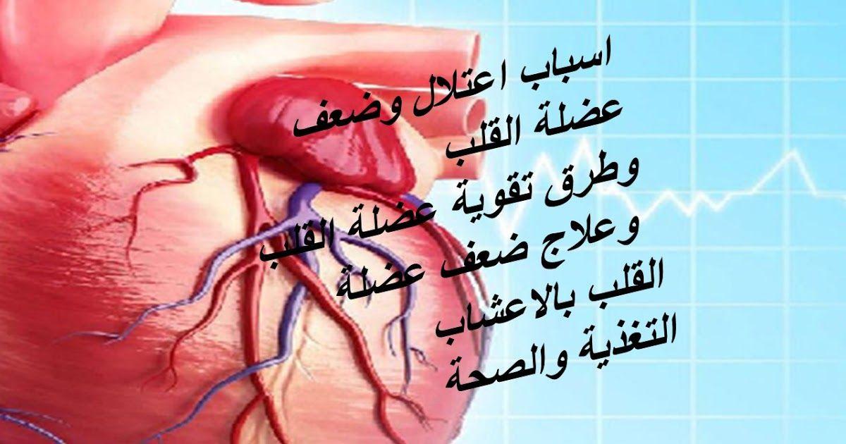 اسباب ضعف عضلة القلب الوقاية من الاصابة بضعف عضلة القلب اطعمة تقوي عضلة القلب فوائد زيت الزيتون للقلب تقوية عضلة القلب بالاعشاب Heart Muscle Muscle