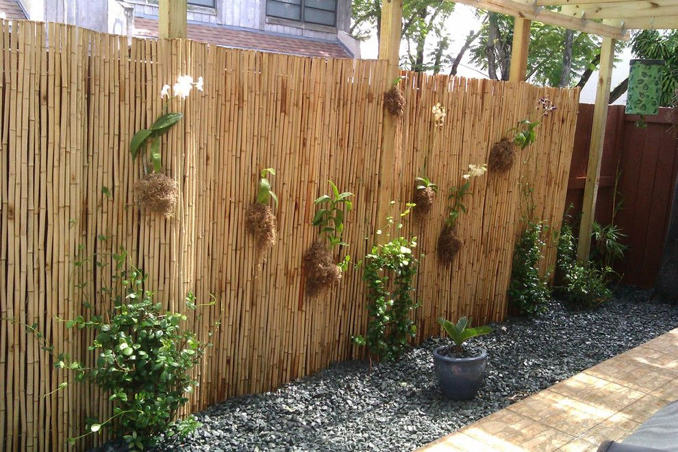 Glorious Bamboo Fence Decorating Ideas For Landscape Tropical Design With Brazilian Orchids
