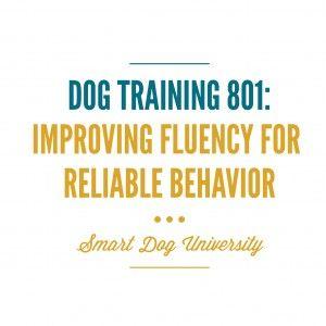 fluency, dog training, reliable dog behavior, Smart Dog University, clicker, Frederick