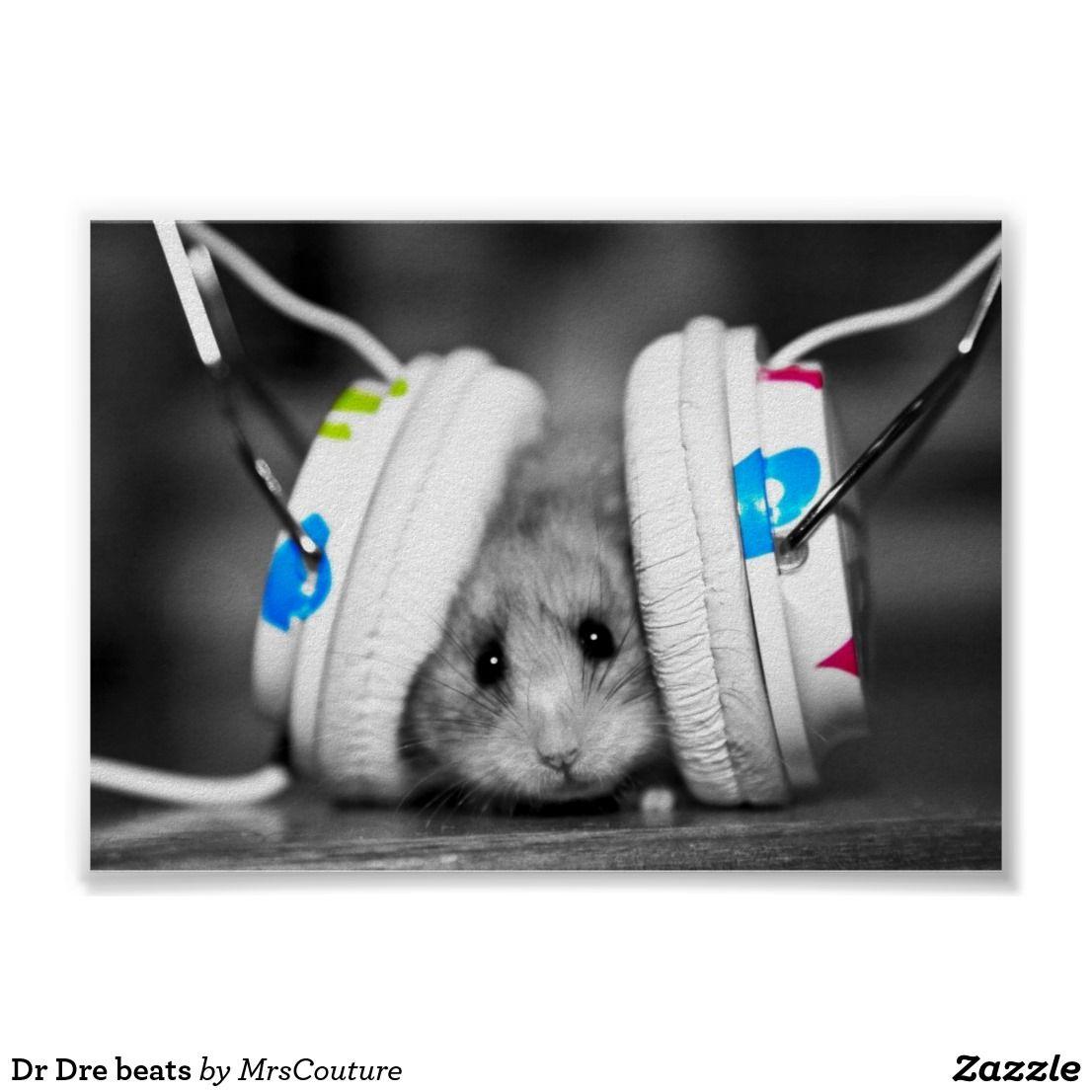 Dr Dre Beats Poster Zazzle Com Cute Hamsters Funny Animals Hamster