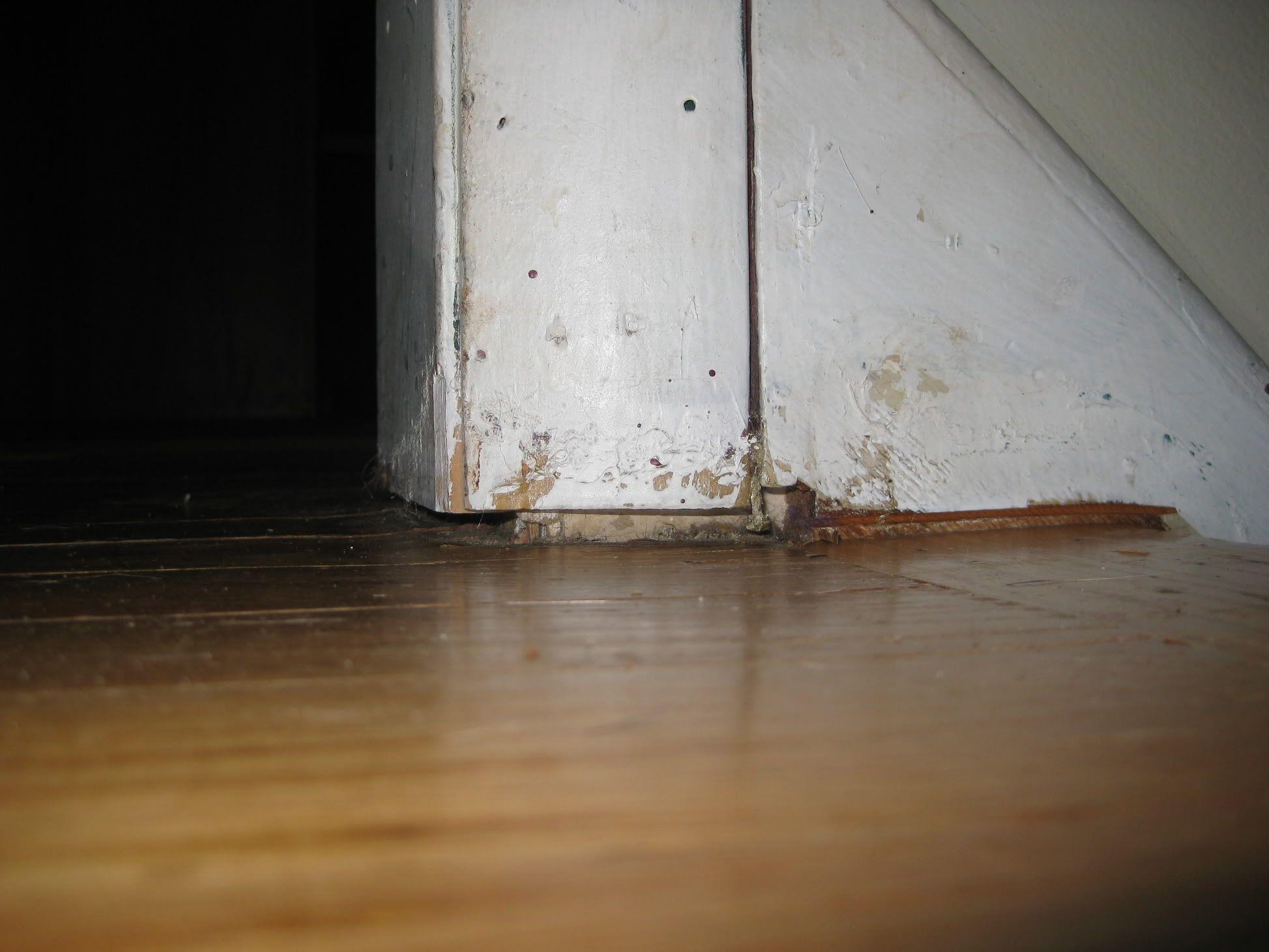Fixing bad door jamb undercut. Door molding, Door jamb