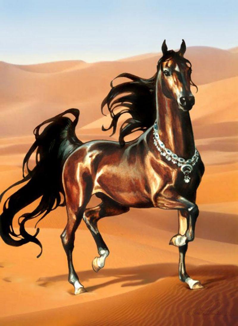 Shamal S Secret Cover Illustration For Shamal S Secret As Part Of The Bella Sara Series Books Watercolor Digital Magical Horses Equine Artwork Horse Artwork [ 1098 x 800 Pixel ]