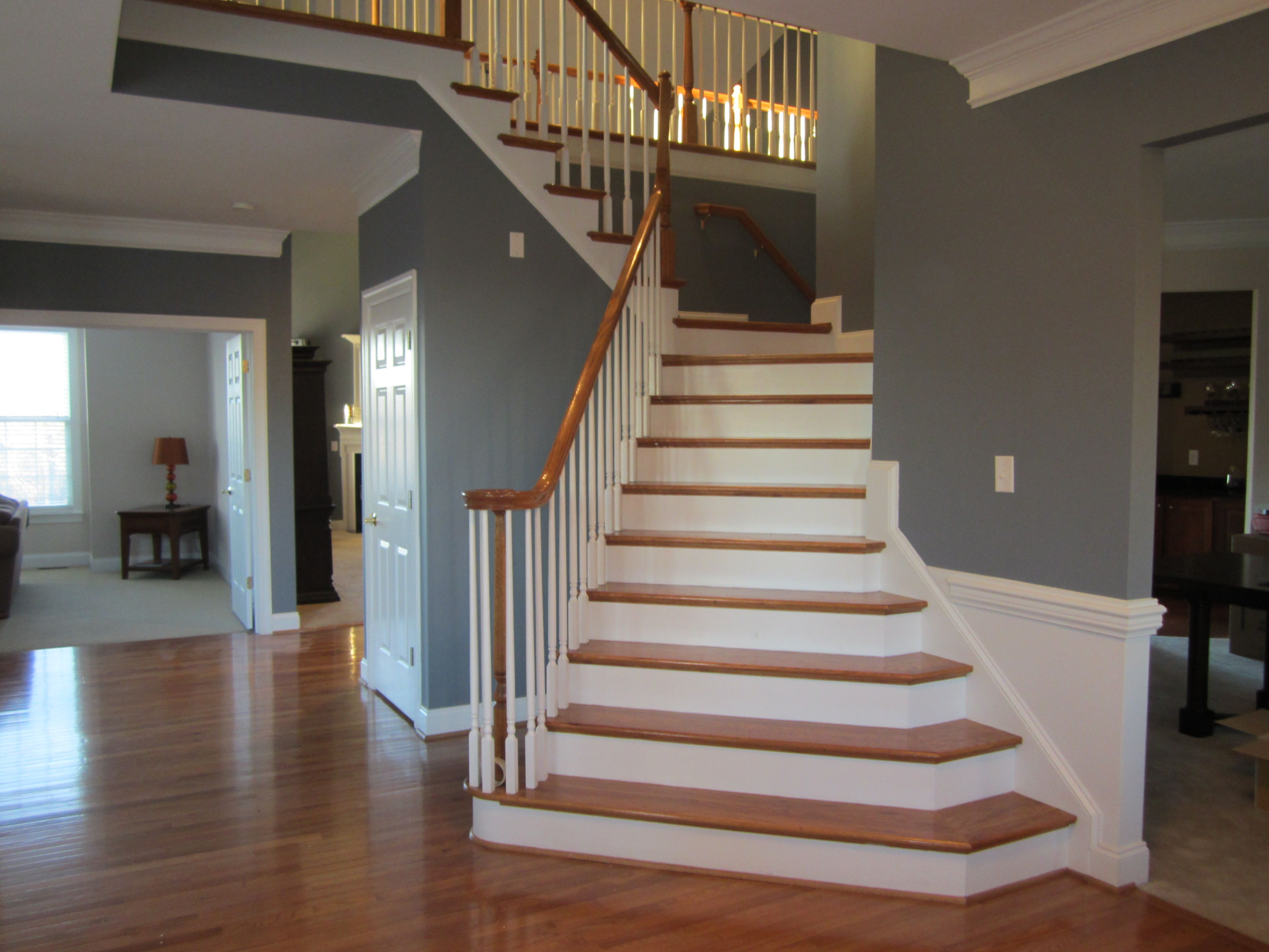 Sherwin Williams Serious Gray Love It