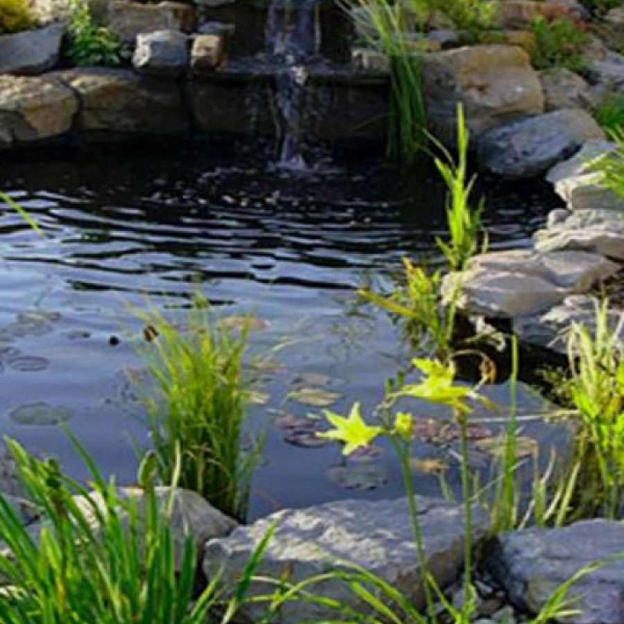50 Awesome Koi Pond Plans You Can Build Yourself To ...