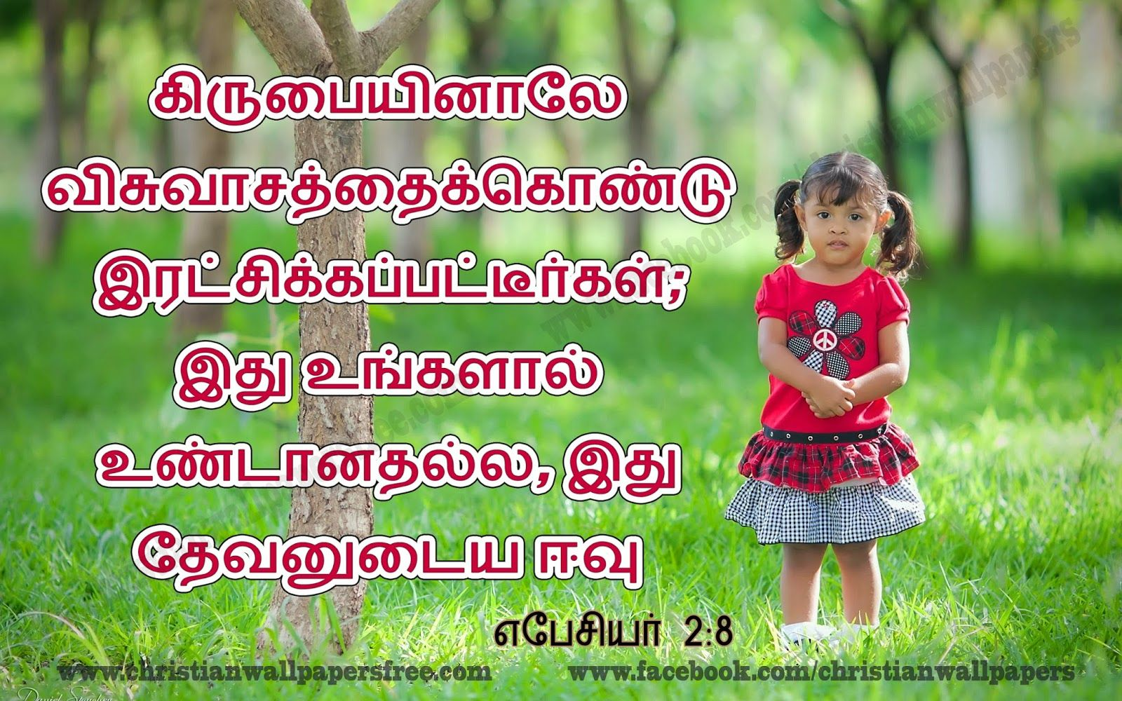 the 25 best tamil bible search ideas on pinterest bible verses