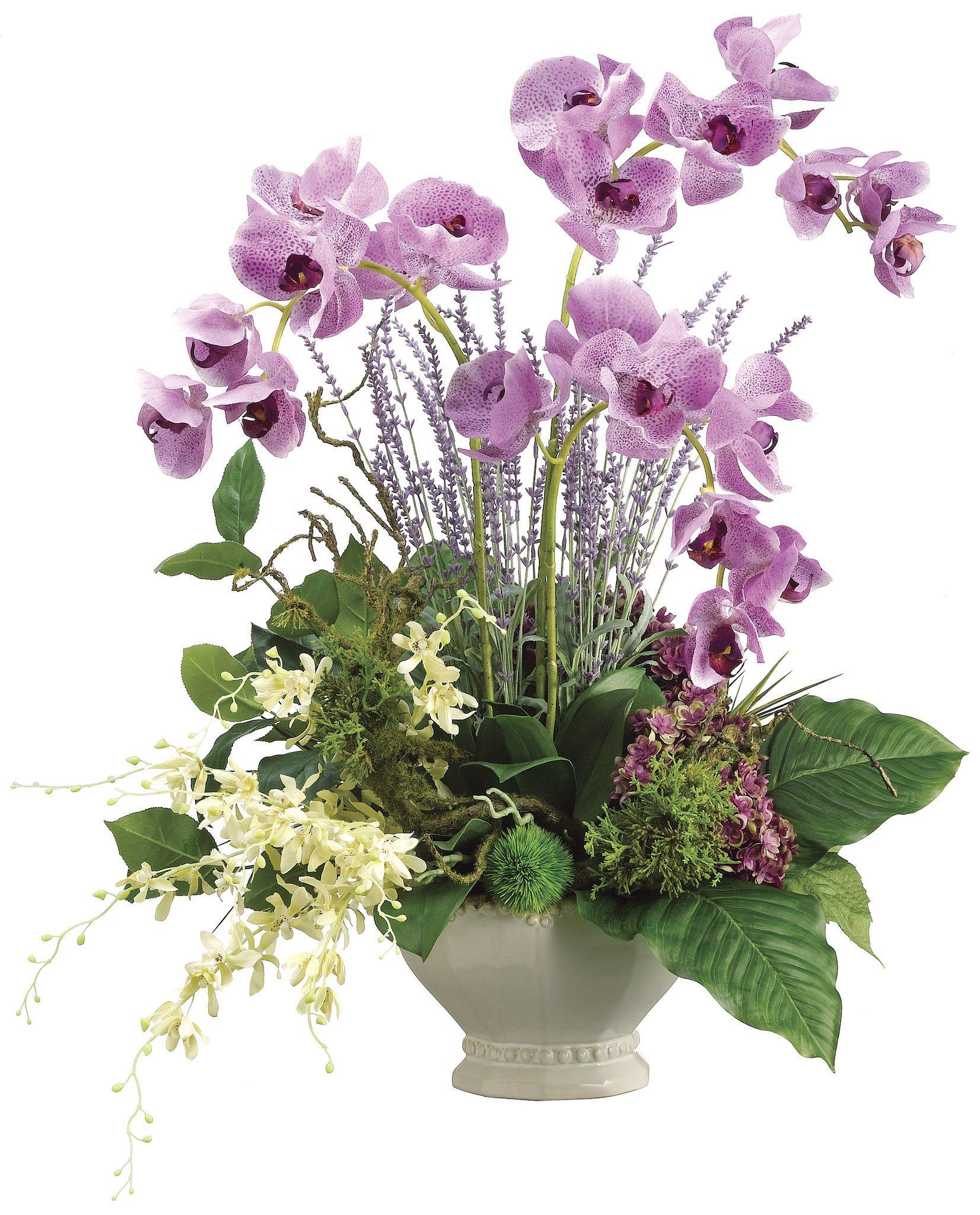 Phalaenopsis orchid dendrobium orchid and hydrangea arrangement blumen christa orchideen - Orchideen arrangement ...