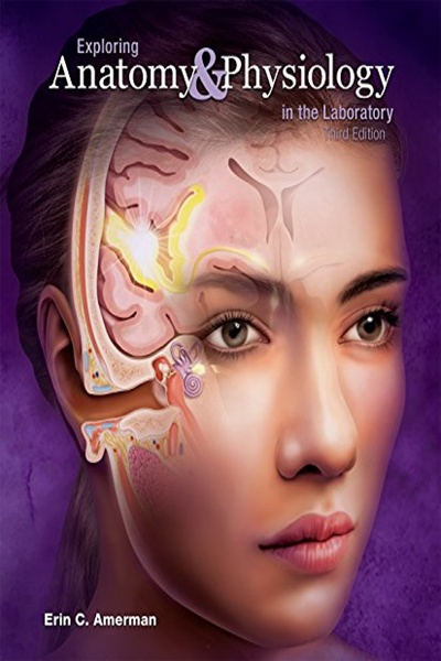 Exploring Anatomy And Physiology In The Laboratory By Erin C Amerman Morton Publishing Company Anatomy And Physiology Physiology Ebook