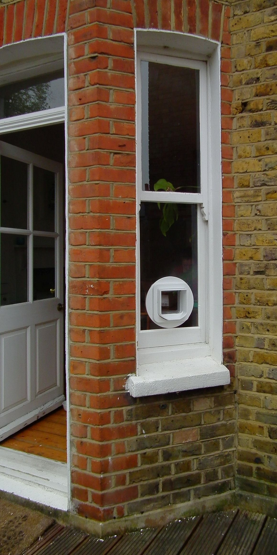 Best cat flap for glass door glass doors pinterest glass best cat flap for glass door planetlyrics Images