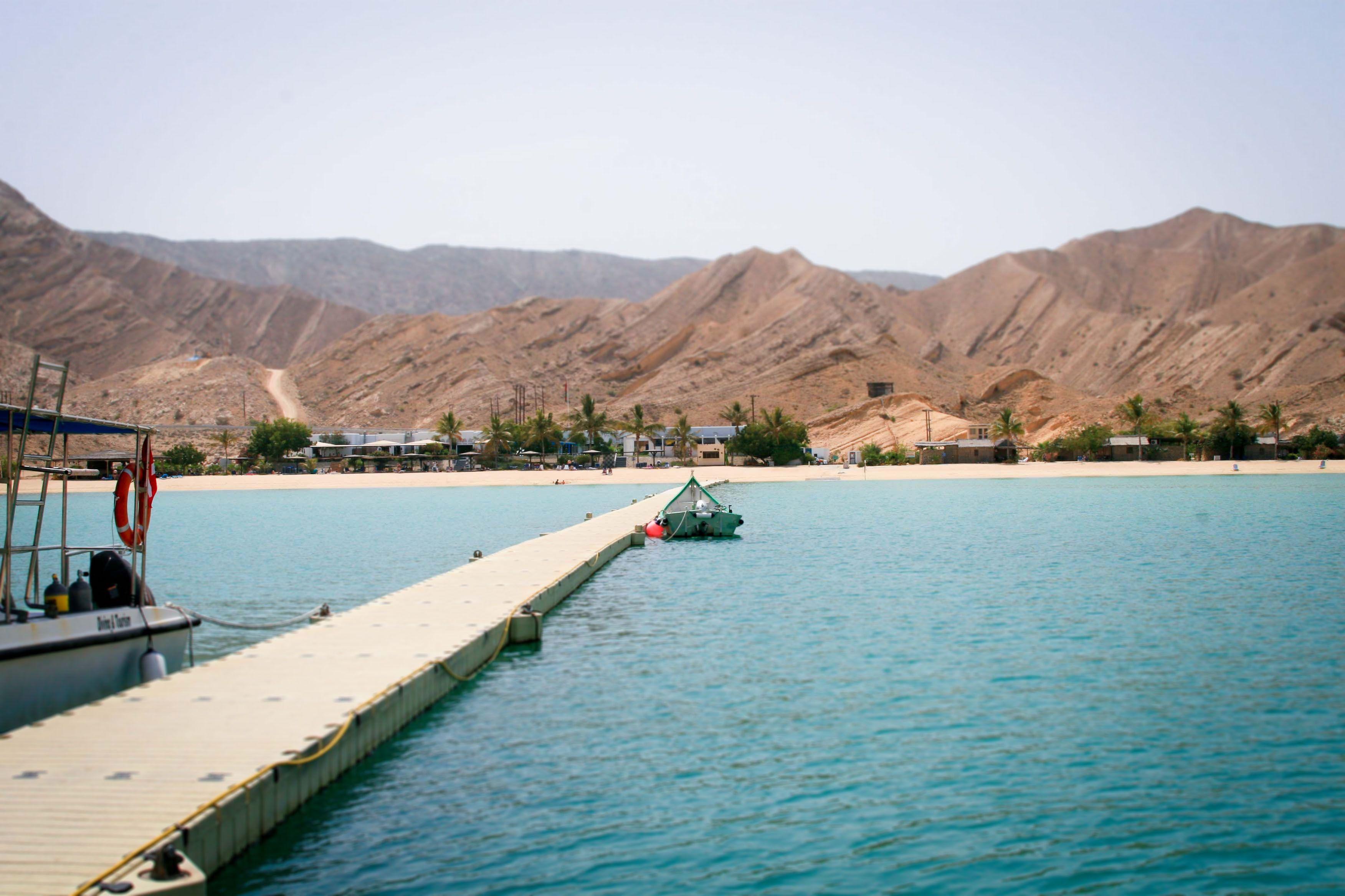 10 Reasons You Should Go Visit Oman Dive Centre Right Now