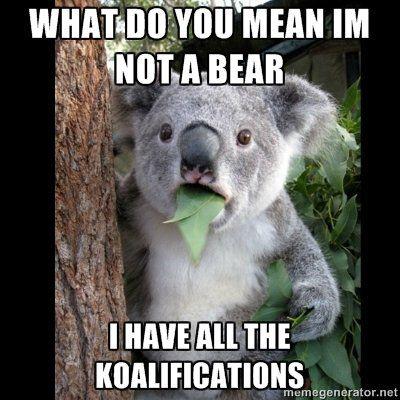 Koalakuteness.